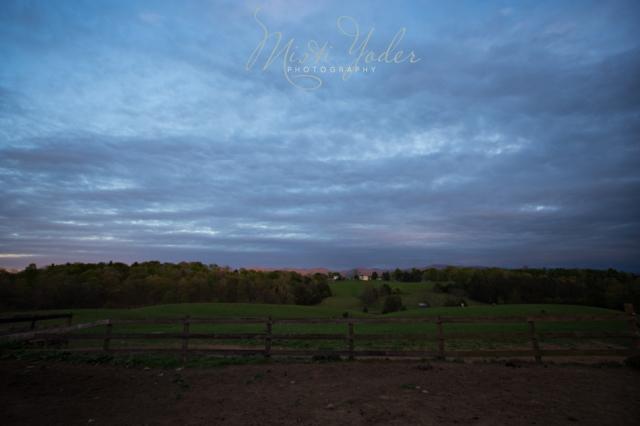 Misti Yoder Photography 1